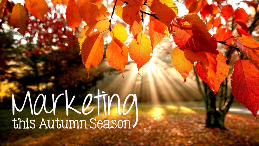 autumnmarketing